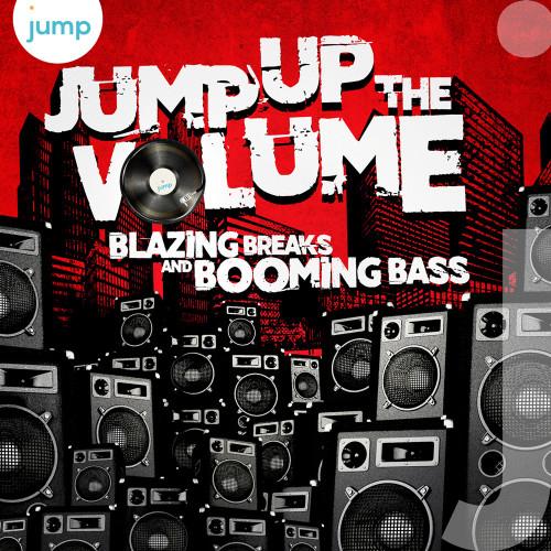 Bass Breaks album cover design illustration