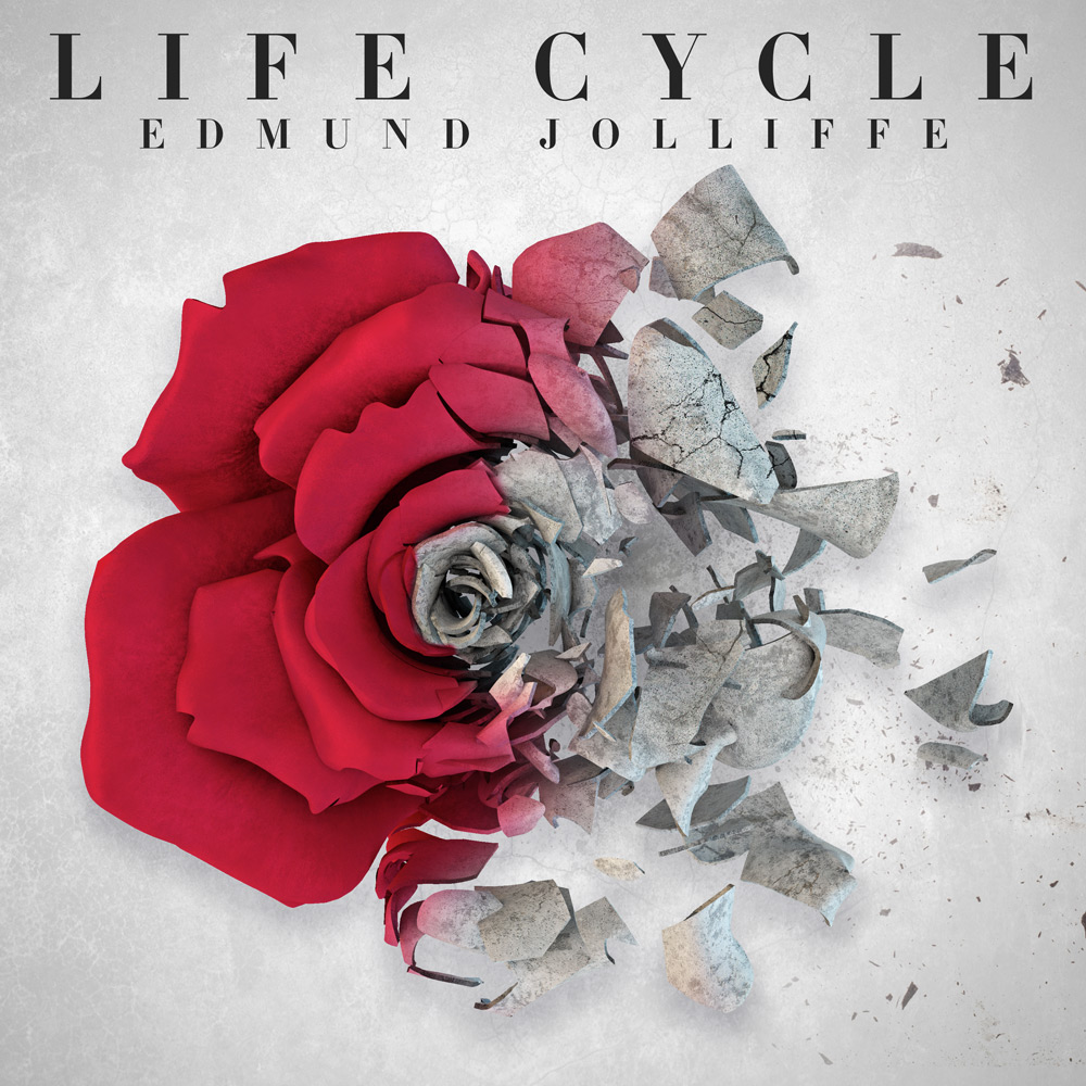 Life Cycle library music 3d album cover design